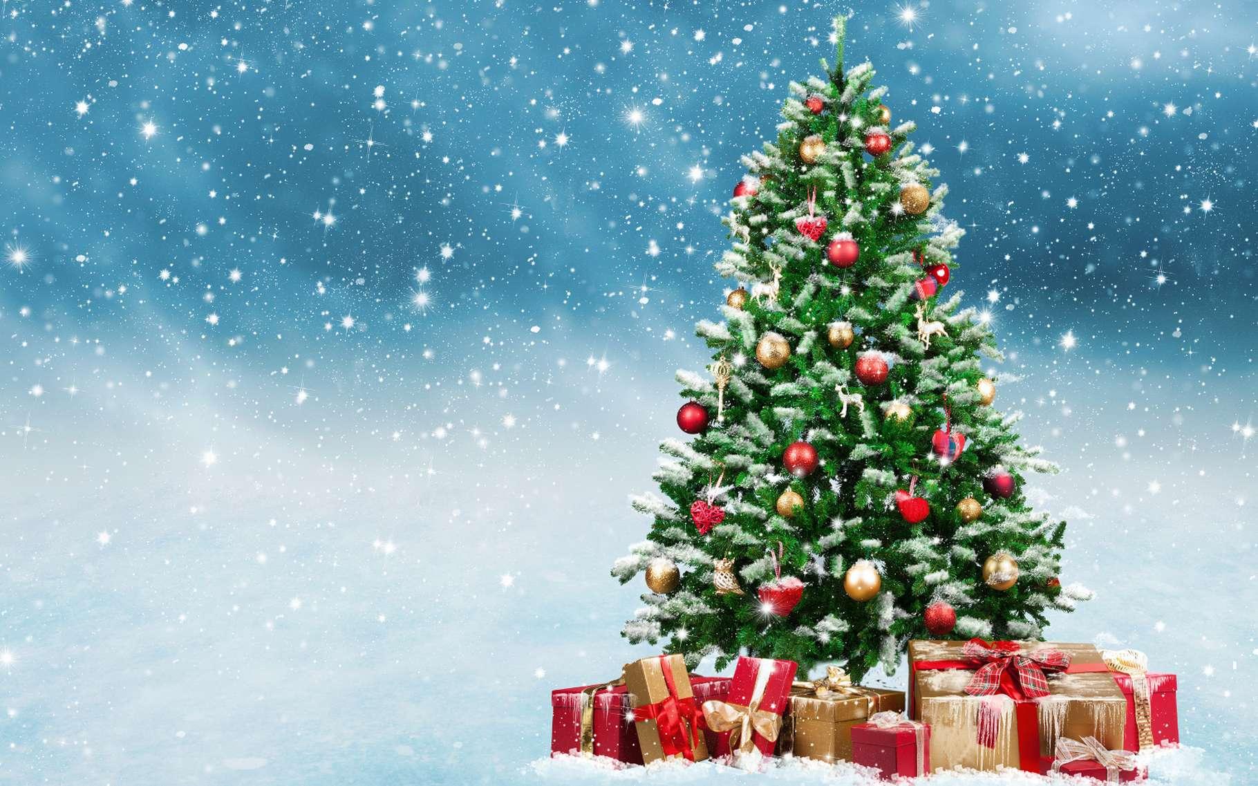 Arbre de Noël de l'ADEPAPE Var 2018