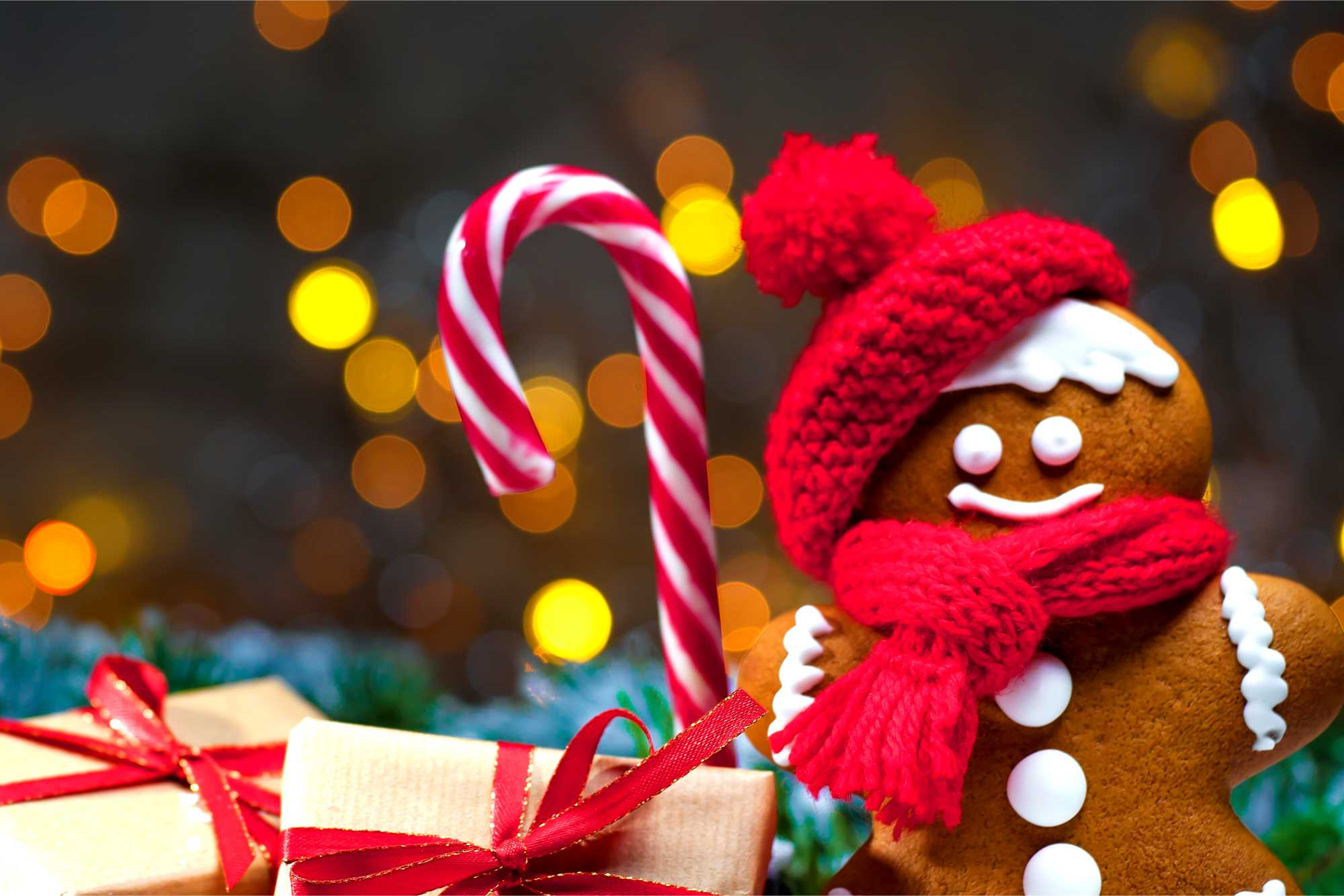 Arbre de Noël 2019